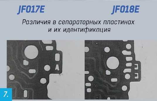 Различия в сепаратарных пластинах